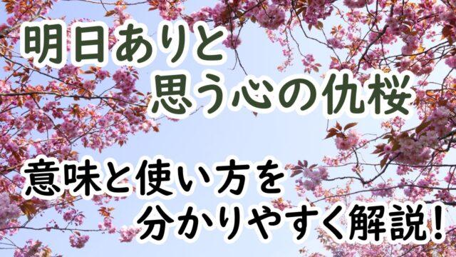 明日ありと思う心の仇桜
