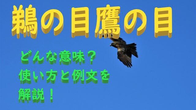 鵜の目鷹の目の意味