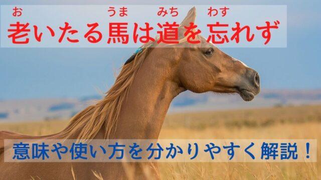 老いたる馬は道を忘れず