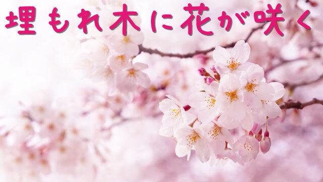 埋もれ木に花が咲く