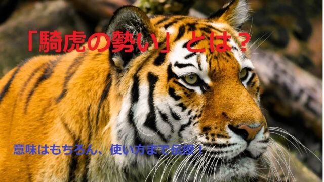 虎のアップ