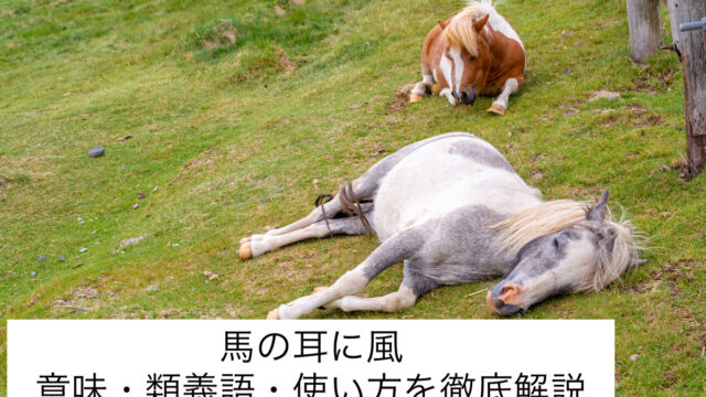 馬の耳に風