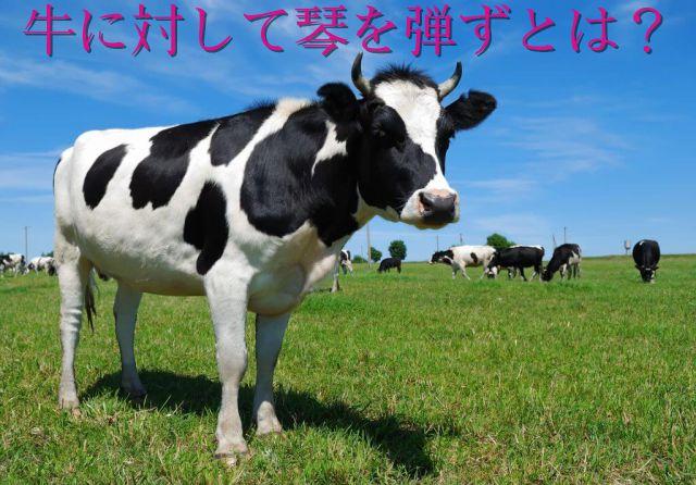 牛に対して琴を弾ず