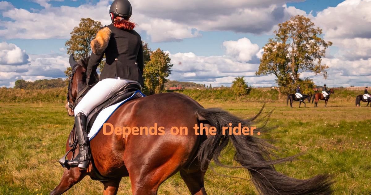 蹴る馬も乗り手次第 英文